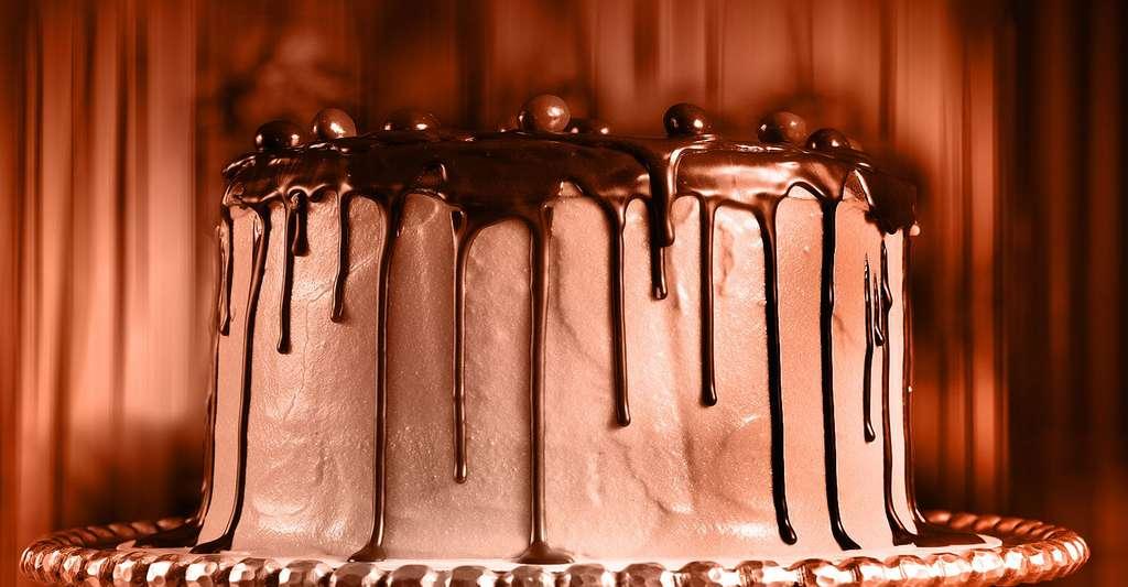 Un délicieux gâteau au chocolat. © Djwtwo, CC by-nc 2.0