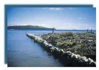 Remblais sur le récif frangeant (Photo C Gabrié)