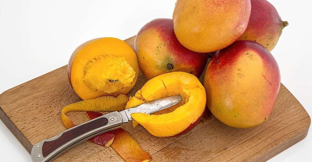 Les allergies alimentaires pourraient être causées par l'apparition de nouveaux aliments comme les fruits exotiques. © Stevepb, DP