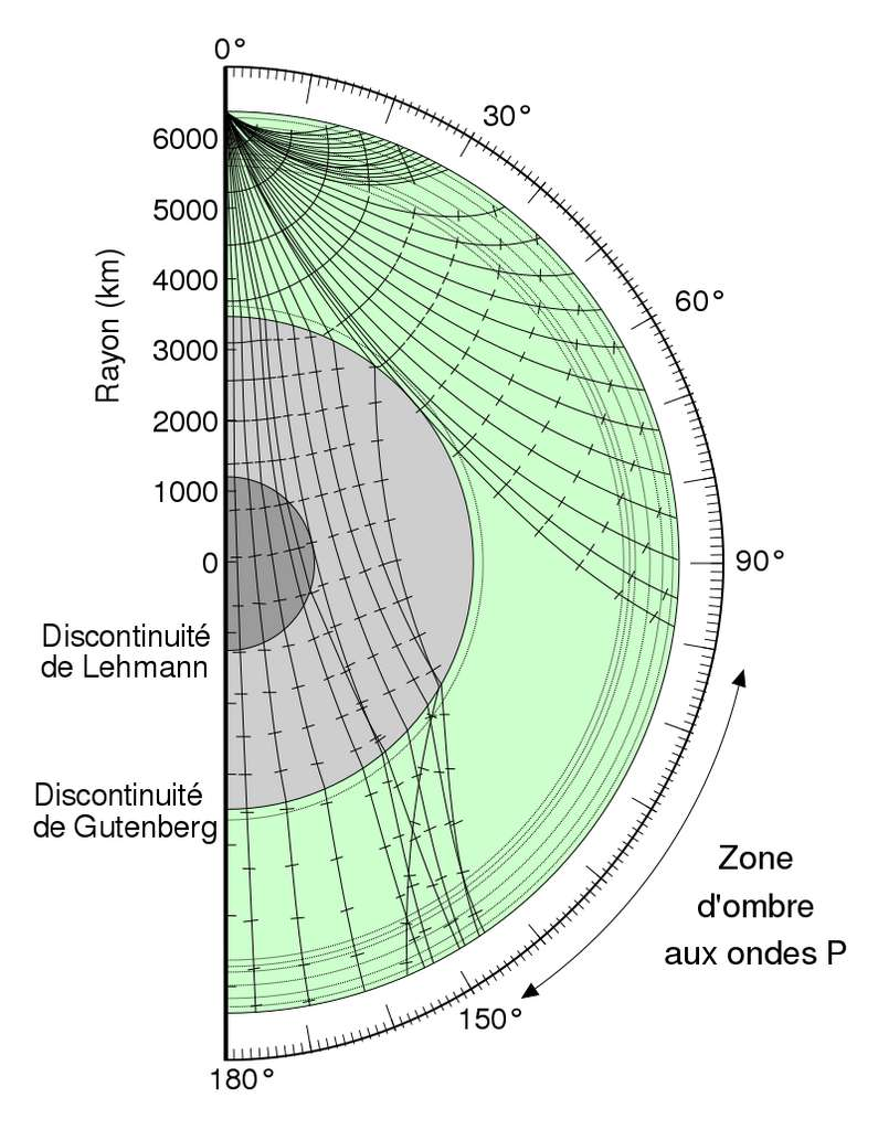 Illustration des rais sismiques représentant la trajectoire des ondes P à l'intérieur de la Terre et les réfractions sur les différentes interfaces. La présence du noyau externe mène à la création d'une zone d'ombre sismique © Vanessa Ezekowitz, United States Geological Survey, Wikimedia Commons, CC by-sa 3.0