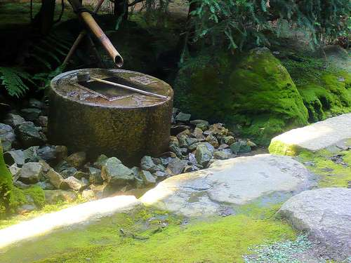 Les Français souhaitent généralement profiter de la présence d'eau dans leur jardin, en aménageant un bassin par exemple. © Stéfan / Flickr - Licence Creative Common (by-nc-sa 2.0)
