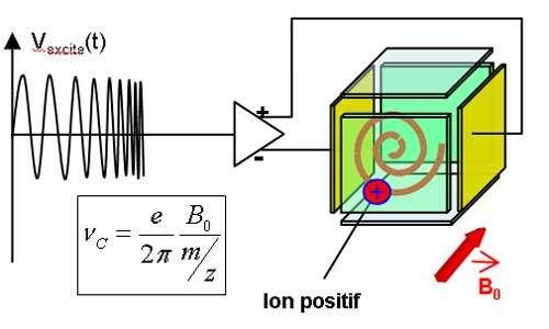 2ème étape : L'excitation résonante des ionsElle consiste à coupler les deux plaques d'excitation (ici en jaune) à un générateur de fréquence variable dont la vitesse de balayage peut être ajustée. Ainsi, pendant le temps où la fréquence appliquée est égale à la fréquence de l'ion (accord de fréquence), celui-ci va absorber de l'énergie lui permettant de décrire une spirale d'Archimède. Lorsqu'il n'y a plus résonance la trajectoire circulaire des ions se stabilise à proximité des plaques de détection. On passe en quelque sorte d'une orbite basse à une orbite haute.