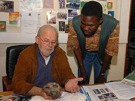 Figure 2. Michel Brunet et Ahounta Djimdoumalbaye, deux des découvreurs de Toumaï au Laboratoire de géobiologie, biochronologie et paléontologie humaine de Poitiers. Crédit : MPFT