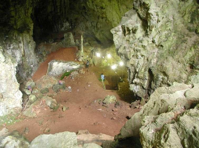La grotte de Tam Pa Ling, lieu de la découverte du plus vieil Homme asiatique « totalement moderne », se compose d'une seule chambre mesurant 40 m de large, 30 m de long et 12 m de haut. Trois puits d'une profondeur maximale de 4,3 m y ont été creusés en 2008 dans le cadre d'études stratigraphiques. Les restes humains ont été trouvés dans la troisième fosse. © Fabrice Demeter et al. 2012, Pnas
