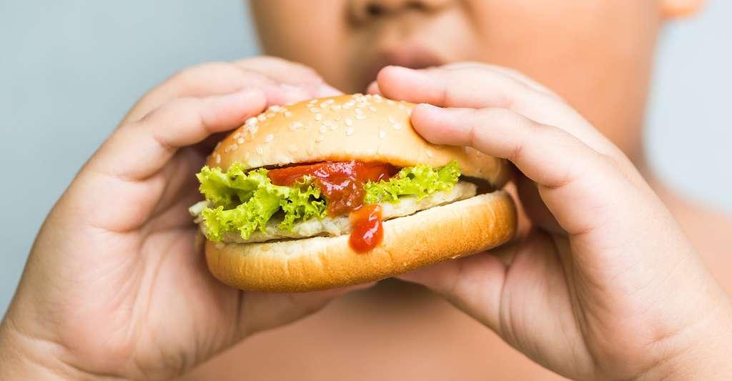 Quel rôle l'alimentation joue-t-elle concernant l'obésité ? Cette dernière peut survenir chez les jeunes enfants. © Kwanchai.c, Shutterstock