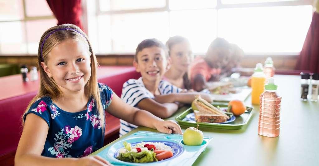 Comment s'organise la restauration scolaire des écoles publiques en France ? © WavebreakmediaMicro, Fotolia