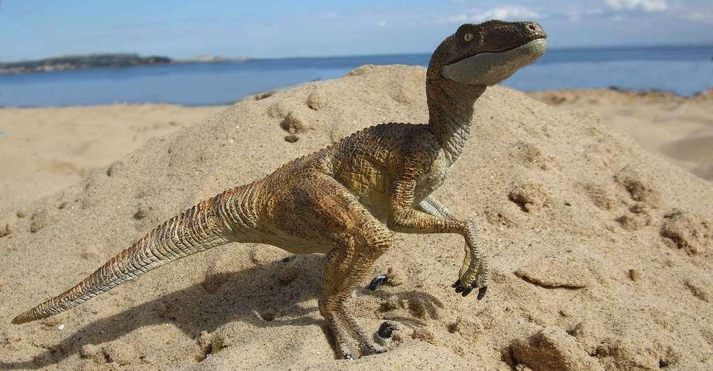 Comment faire pour mesurer la composition isotopique de l'oxygène d'un fossile de dinosaure ? © Mr. Evil Cheese Scientist, CC by-nc 2.0