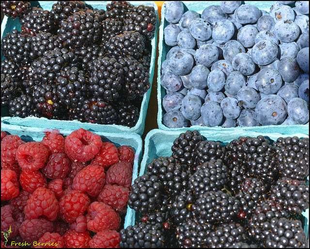 Les baies sont bénéfiques à la santé du cerveau. C'est le seul fruit préconisé dans le régime MIND. © Swong95765, flickr, CC by 2.0