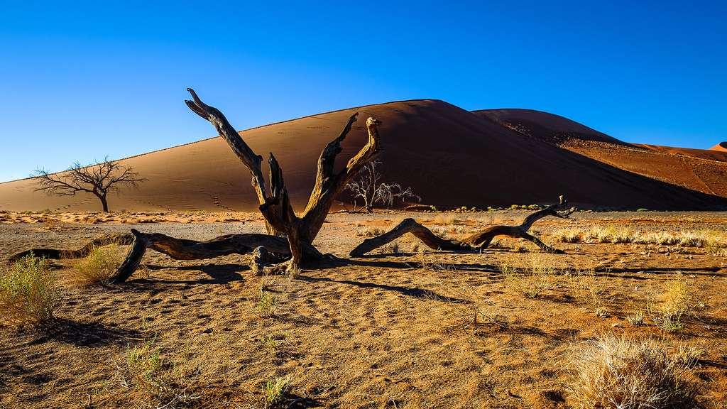 Sossusvlei, un désert et un site touristique majeur de Namibie
