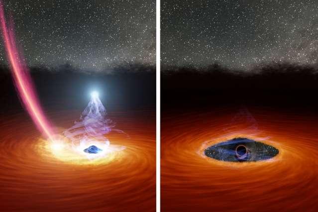 Cette illustration à deux panneaux montre un trou noir entouré d'un disque de gaz, avant et après que le disque soit partiellement dispersé. Dans le panneau de gauche, la boule de lumière blanche au-dessus du trou noir se trouve dans la couronne du trou noir, une collection de particules de gaz ultra-chaudes qui se forment lorsque le gaz du disque tombe dans le trou noir. La traînée de débris tombant vers le disque est ce qui reste d'une étoile disloquée par la gravité du trou noir. Le panneau de droite montre le trou noir après que les débris de l'étoile ont dispersé une partie du gaz dans le disque, provoquant la disparition de la couronne. Un scénario plausible mais non démontré pour expliquer ce qu'il s'est passé en 2018 avec 1ES 1927+654. © Nasa, JPL