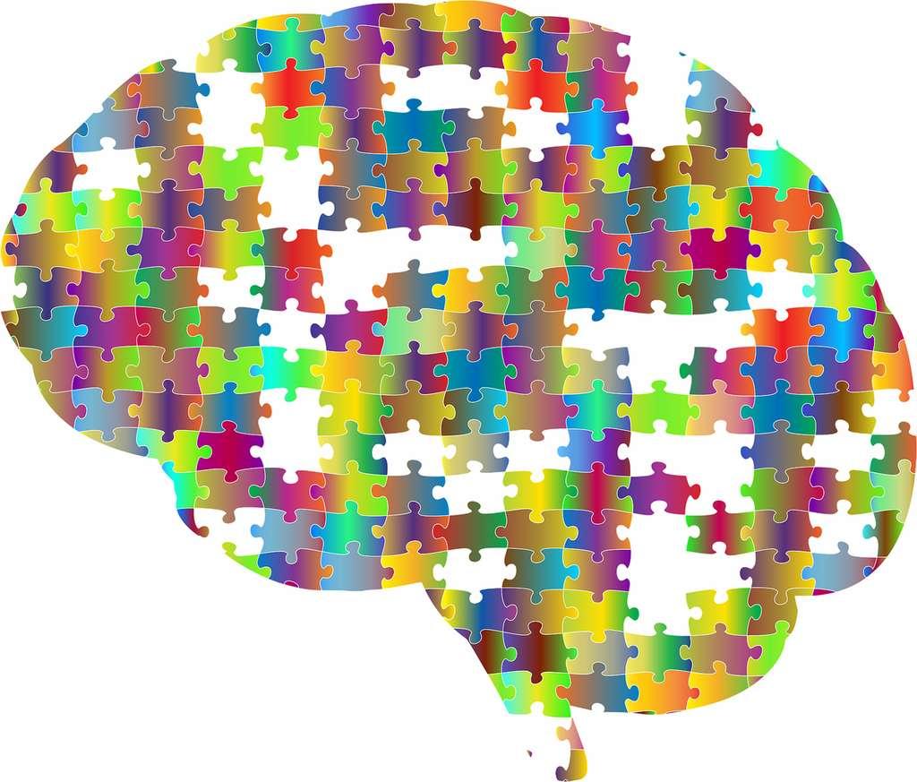 Il existe de nombreux types de biais cognitifs. © GDJ by Pixabay