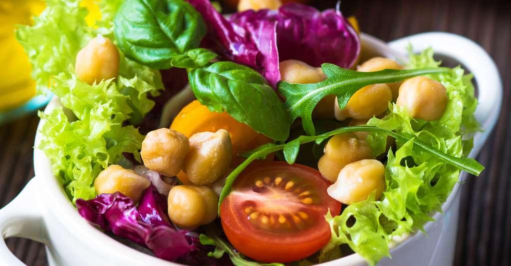Une délicieuse salade d'été avec différentes variétés de salades vertes. © Dani Vincek, Shutterstock