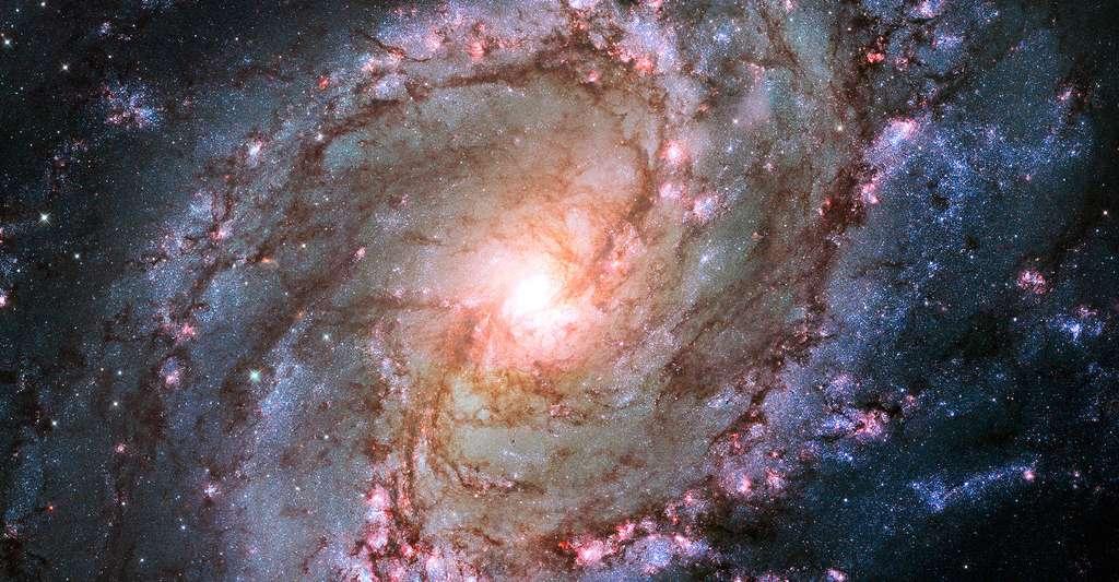 La galaxie Messier 83, photographiée ici, est très semblable à la Voie lactée. © Nasa, ESA and the Hubble Heritage Team (STScI/AURA) Acknowledgement : William Blair (Johns Hopkins University) CCO