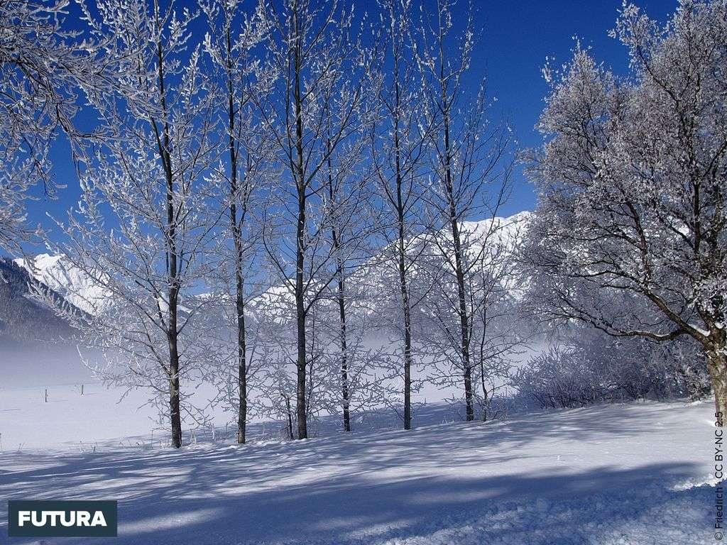 Neige et givre au Tyrol