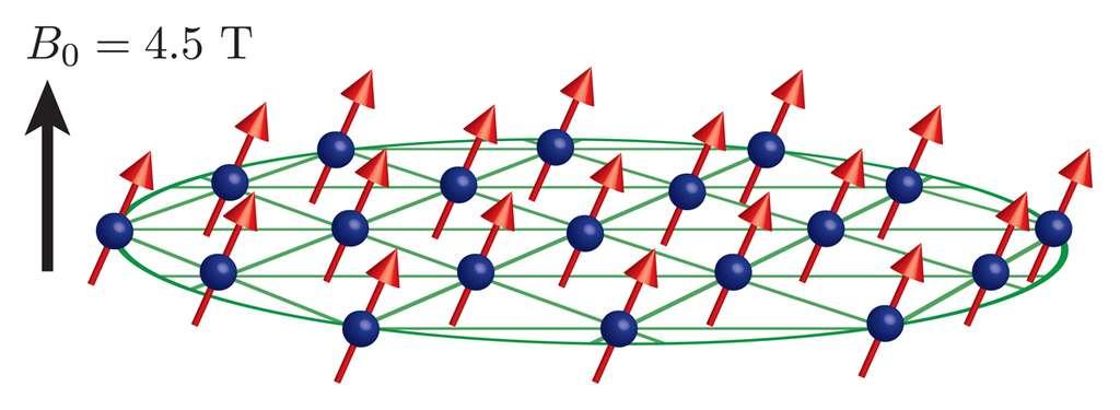 Un schéma montrant une partie des ions de béryllium (sphères bleues) piégés et plongés dans un champ magnétique de 4,5 teslas. Leur moment magnétique (flèches rouges) est orienté dans une même direction. © Britton/NIST