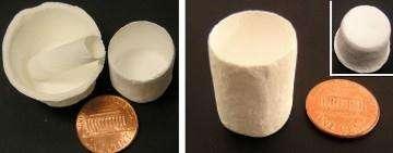 Galerie d'objets fabriqués en nano papier (Crédits : Université d'Arkansas)