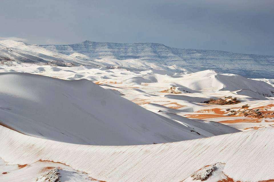 La neige est tombée dans la région de Aïn Sefra, dans le Sahara algérien, à 1.500 mètres d'altitude. © Météo-France