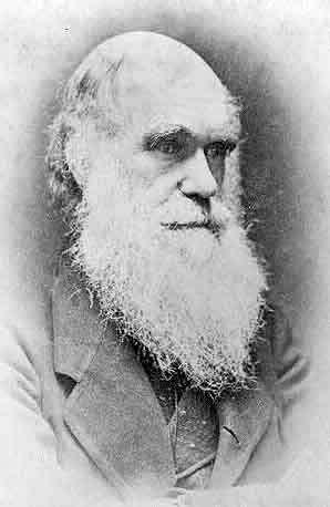 Photographie de Darwin (non datée – auteur inconnu). © Library of Congress