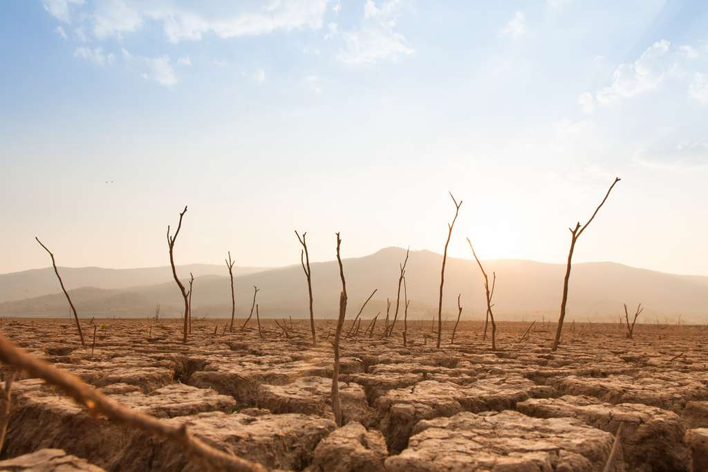 La plupart des pays envisagent d'augmenter massivement leurs productions d'énergies fossiles dans les années à venir, au détriment des engagements pris pour limiter le réchauffement climatique. © piyaset, Adobe Stock