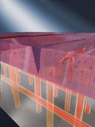 Le matériau vascularisé mis au point par l'équipe de Scott White et Kathleen S. Toohey. Les tubes microscopiques apportant les monomères et le catalyseur. Voir la photographie au bas de l'article. © µVac (Microvascular Autonomic Composites) Initiative