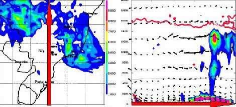 Prévision des oxydes d'azotes produits par les éclairs pour le premier février 2005. A gauche, coupe horizontale à 300 hPa, à droite, coupe verticale le long du méridien de Bauru.© Laboratoire d'Aérologie. TROCCINOX.