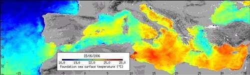 Température de la surface de la mer méditerranée le 23 juin 2006 (crédit : ESA)
