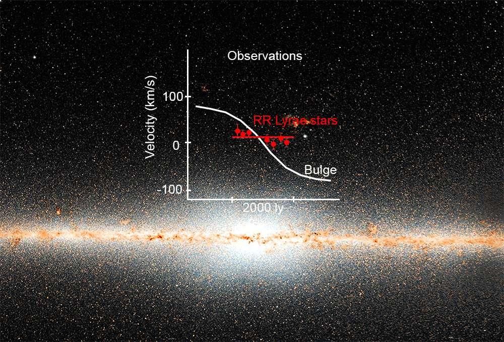 Le disque de notre galaxie est bien visible dans l'infrarouge avec cette image du satellite Wise. La majorité des étoiles du bulbe central se comportent comme un bloc cylindrique en rotation. Cependant, une population d'étoiles plus anciennes, sous forme de RR Lyrae, ne se comporte pas de la même façon dans la partie centrale du bulbe de la Voie lactée. Cette population, constituant 1 % de la masse du bulbe, est susceptible d'avoir été l'une des premières parties de notre galaxie. © NOAO/AURA/NSF/AIP/A. Kunder