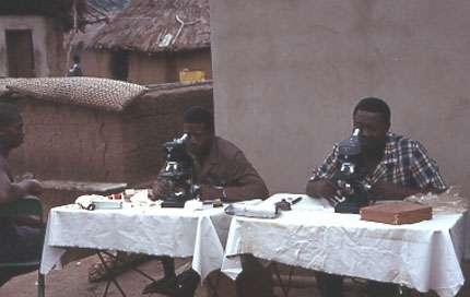 Photo : 12 - Examen direct entre lame et lamelle de suc ganglionnaire à la recherche du parasite. L'individu ponctionné est assis à côté des microscopistes en attendant le résultat. © Gérard Duvallet
