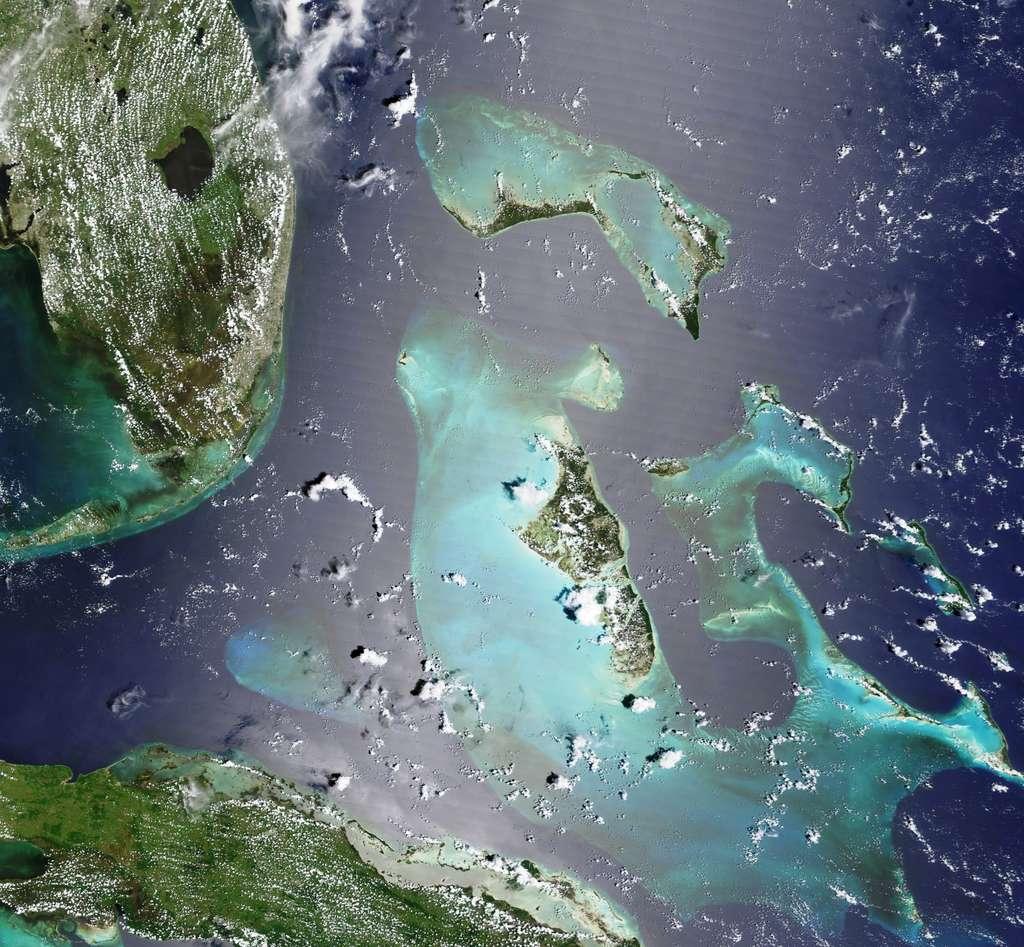 Sur cette image, on voit en haut à gauche la Floride et en bas Cuba. Le Grand Banc des Bahamas est bien visible au milieu, avec les îles de l'archipel d'Andros. Juste au-dessus, on voit le Petit Banc des Bahamas. © Nasa