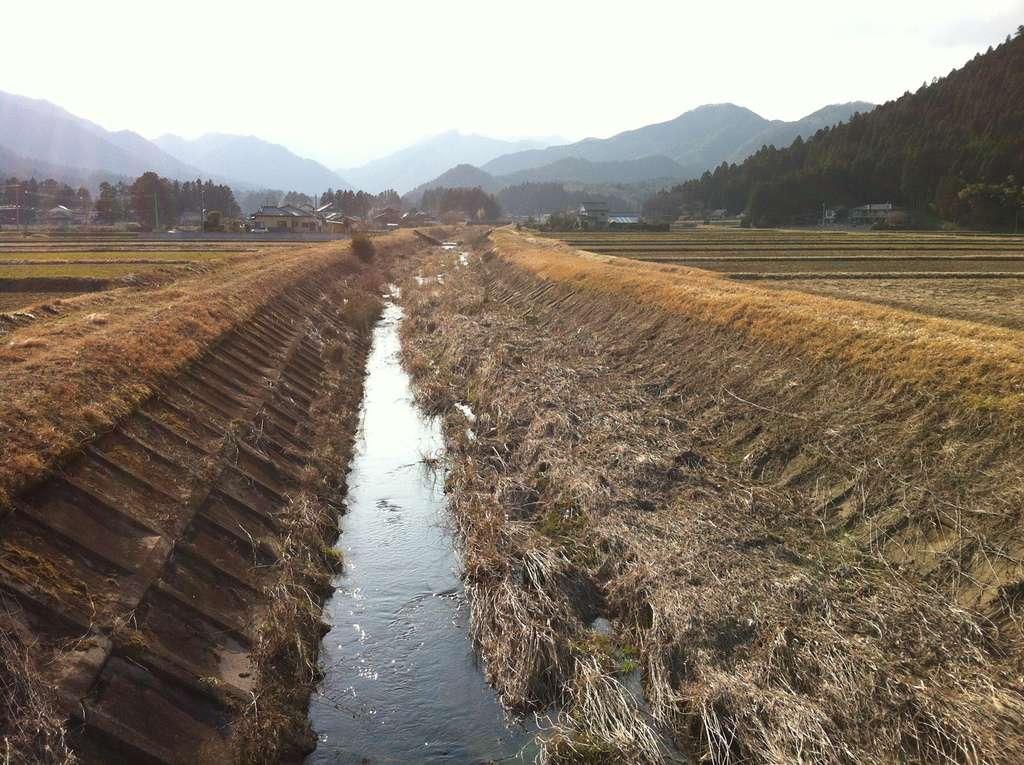 Les rivières de la région de Fukushima drainent à la fois des montagnes boisées et des plaines cultivées. © O. Evrard