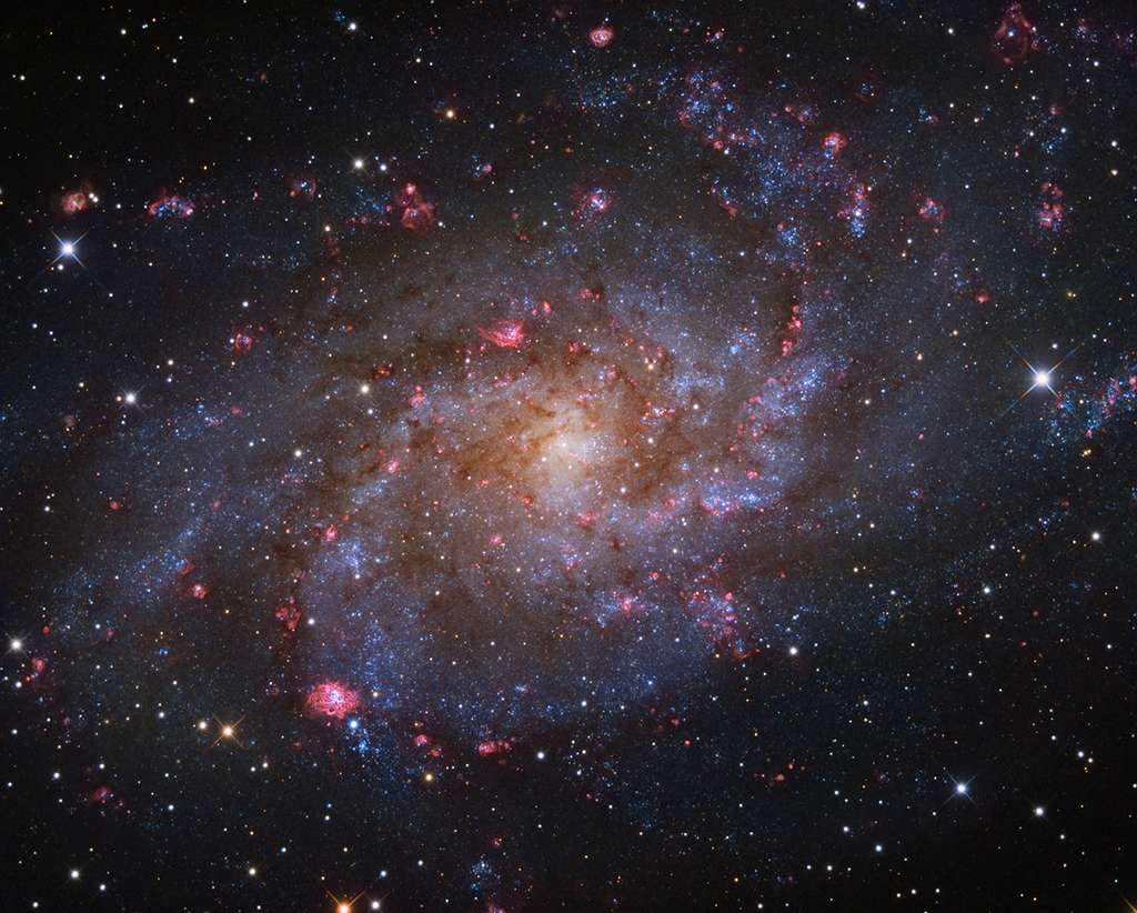 M33 The Triangulum Galaxy. © Rui Liao, Insight Investment Astronomy Photographer of the Year