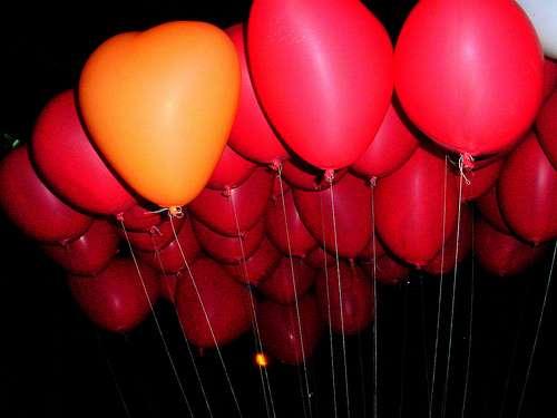 Le bonheur n'est-il que du plaisir ? © Praram, Flickr, CC by-nc-sa 2.0