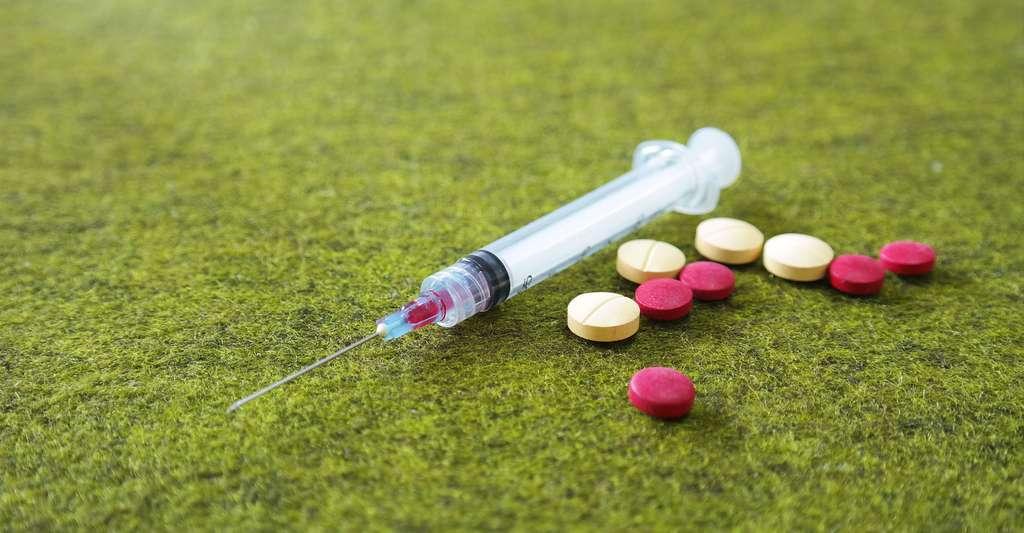 La morphine se fixe dans la moëlle épinière. © Wendra, Shutterstock