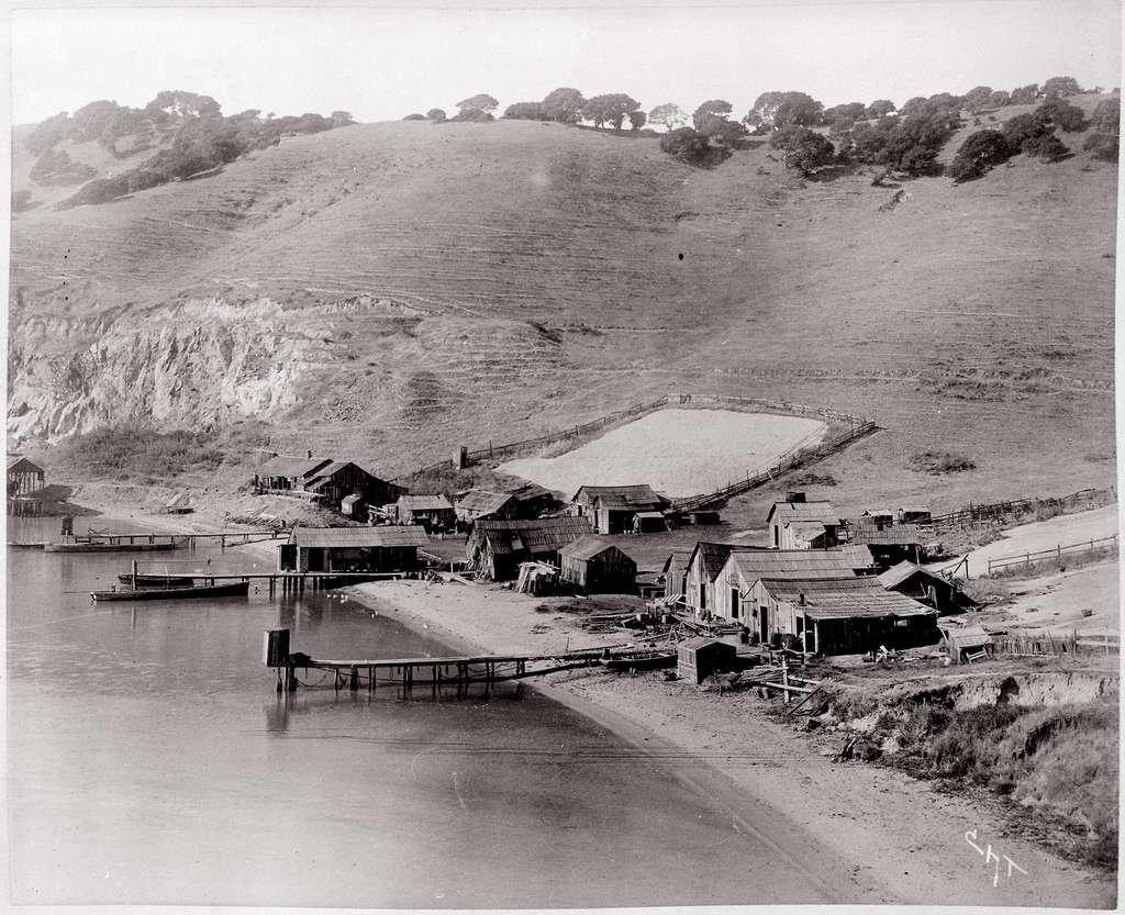 Vue du camp de pêche chinois contre une colline. Motifs de séchage, filets tendus à la mer, et baraques étreignant le rivage. Point de San Pedro, la baie de San Francisco, ca. 1889. © Townsend - Domaine public