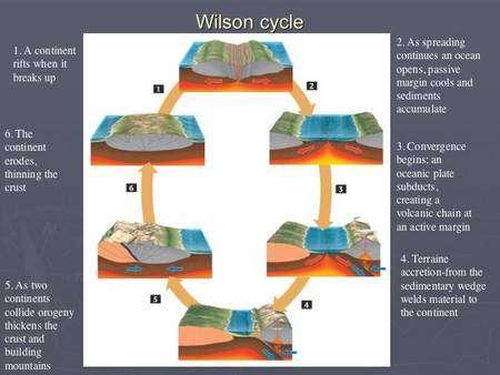 Le schéma du cycle de Wilson.Crédit : Florida State University