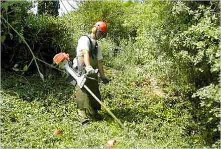 Débroussailler est une opération de prévention utile, notamment aux abords des habitations.