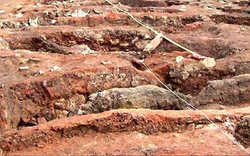 Vue partielle des fouilles de la Seille
