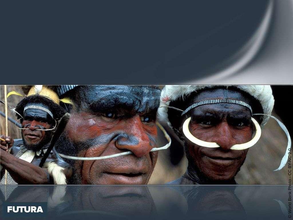 Hommes de la tribu Dani en costume traditionnel (Nouvelle-Guinée indonésienne)
