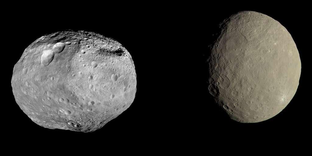 La protoplanète Vesta, à gauche, et la planète naine Cérès, vues par la sonde Dawn. L'image n'est pas à l'échelle. Vesta est un objet dont le diamètre varie entre 446 et 572 kilomètres, selon la direction. Quant à Cérès, son diamètre est d'environ 950 kilomètres. © Nasa, JPL