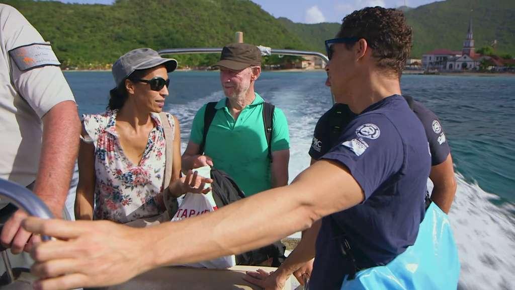 Dans ce documentaire en deux parties, Allez savoir, écrit par Sabine Quindou, Yves Paccalet (ici à gauche et au centre) et Éric Beauducel (également réalisateur), nous découvrirons deux missions en Martinique : le suivi des tortues marines en catamaran et une campagne d'observation aérienne de la mégafaune marine. Nous aborderons ensuite le rocher du Diamant, une réserve ornithologique. Le second opus, en Guadeloupe, nous emmènera sur l'île de Basse-terre, autour et sur le volcan de La Soufrière, dans une randonnée difficile et agrémentée de rencontres. © Les Films en vrac