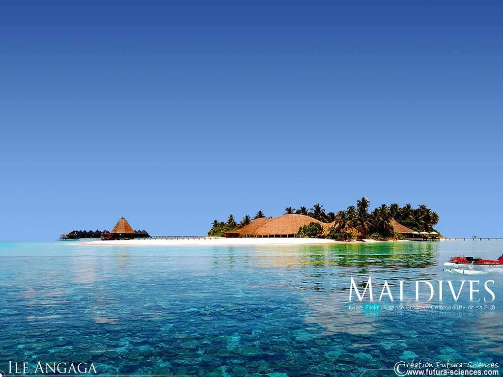 Fond D Ecran Envie D Ailleurs Maldives