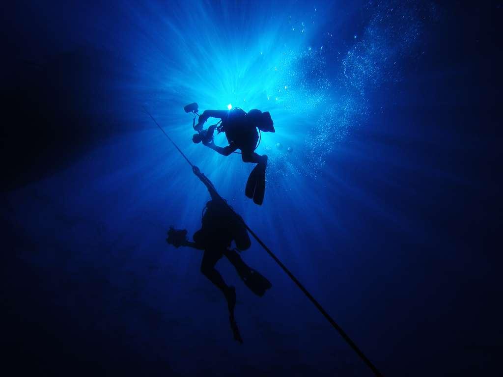 Les plongeurs sous-marins s'exposent à des pressions supérieures à celle de la pression atmosphérique. Pour éviter l'accident de décompression, ils doivent remonter lentement à la surface et respecter des paliers de décompression pendant lesquels l'azote peut être évacué de l'organisme sans danger. © arno gourdol, cc by nc nd 2.0