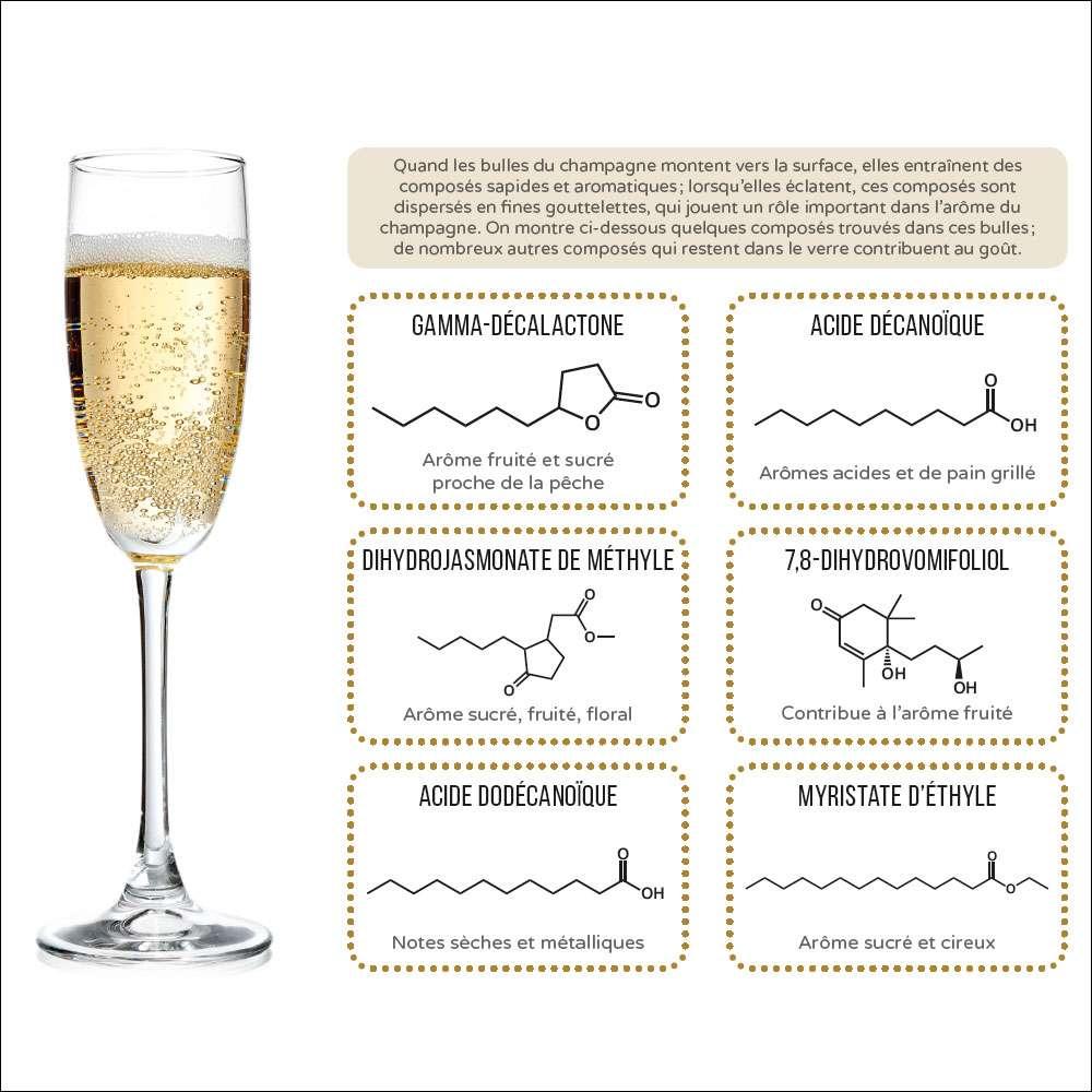 Les composés impliqués dans les bulles de champagne. © PPUR