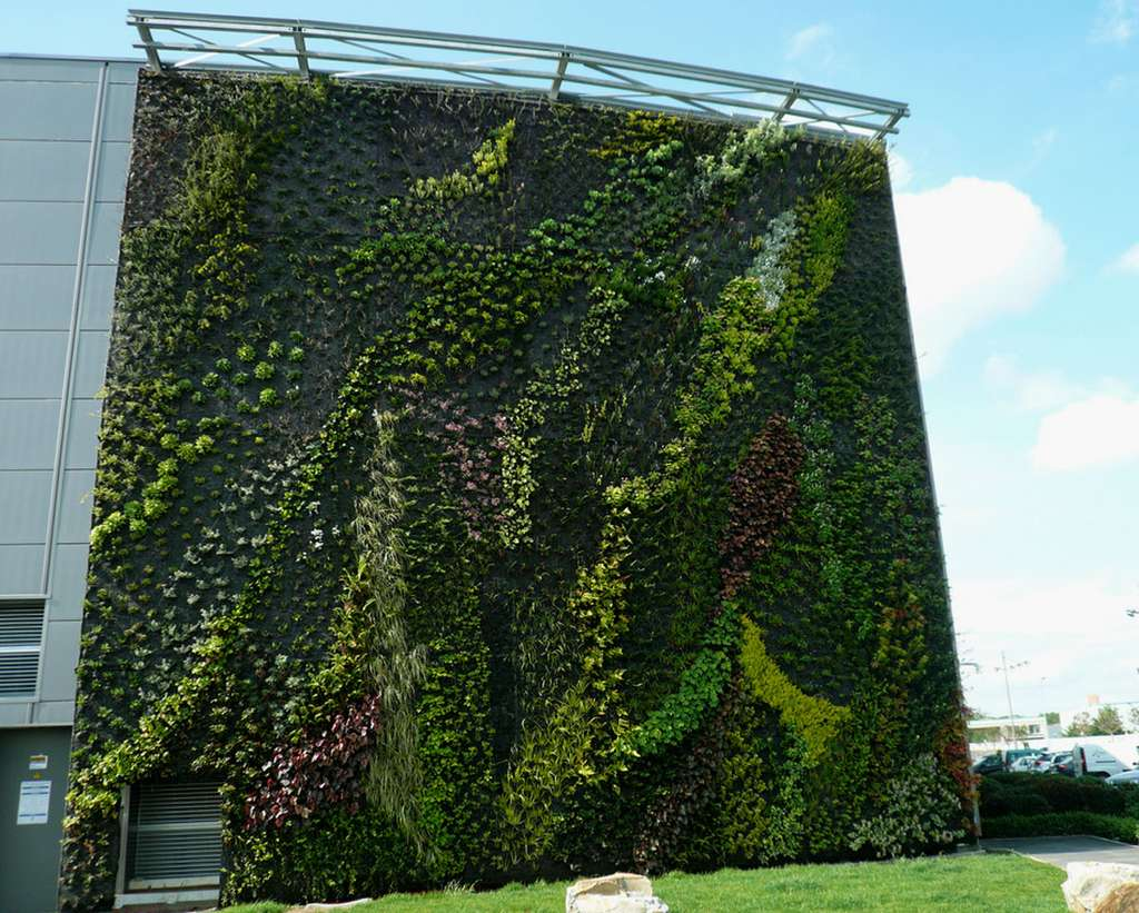 Mur végétal à Sainte-Geneviève-des-Bois, monté sur un géotextile. © Virginia Manso, CC by-nc 2.0