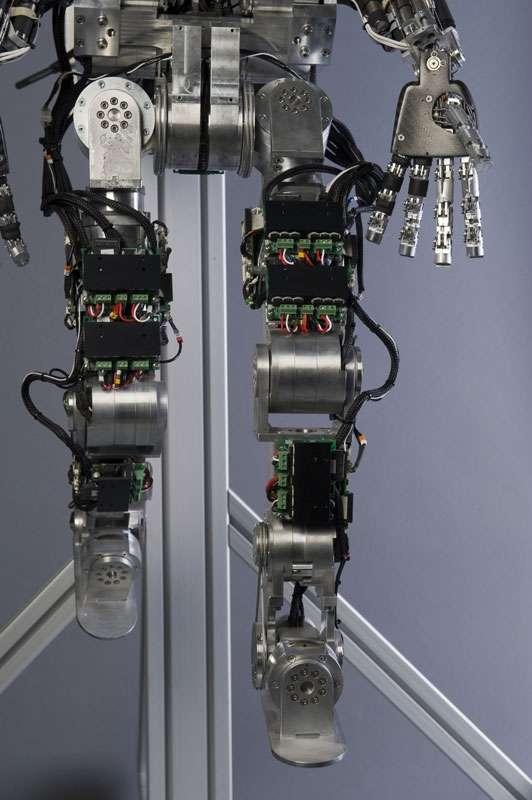 Vues de détails de certains éléments du robot iCub : jambes et haut du tronc. © Courtesy of the RobotCub project