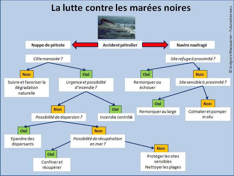 Cliquer pour agrandir. Diagramme de l'organisation de la lutte contre les marées noires. © Grégoire Macqueron / Futura-Sciences