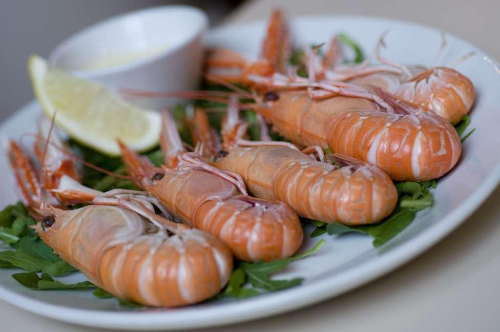 La langoustine se déguste nature avec un peu de mayonnaise. © Centotre Contini, Flickr