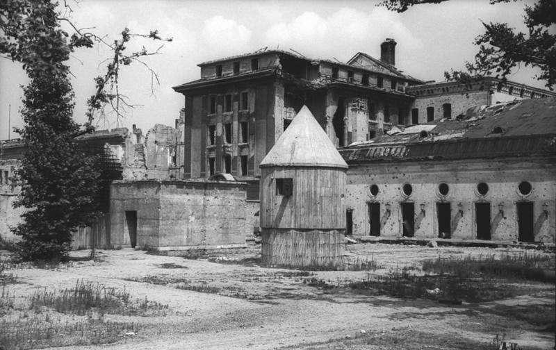 Photo de juillet 1947 du Führerbunker, dans le jardin de la chancellerie du IIIe Reich. © Bundesarchiv, Bild 183-V04744, CC by-sa 3.0