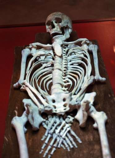 Le squelette d'Ariche tel qu'il a été trouvé en 1994. © Musée national de Carthage