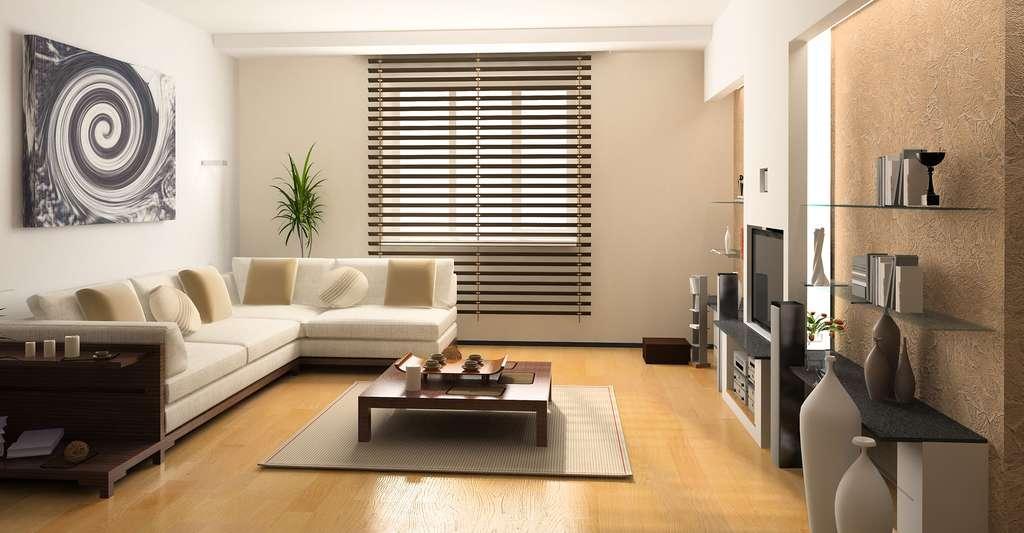 Appartement moderne avec tout le confort thermique nécessaire. © Zastolskiy Victor, Shutterstock